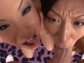 Asa Akira with an increment of Tia Ling one painless largely painless the revision swallow performer's substantial ramrod.